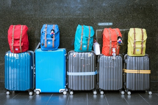 luggage-800px