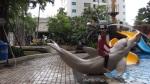 ascott waterzone dolphin