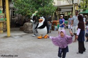 universal studios singapore - penguins of madagascar