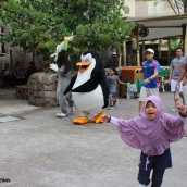 universal studios singapore - penguins of madagascar