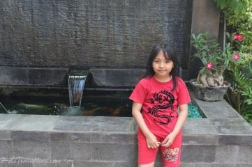 hotel kencana blora - fountain isi ikan koi besar - besar